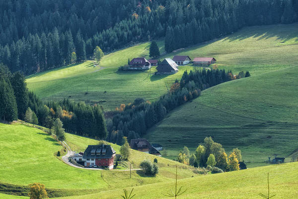 Photograph - Houses In Black Forest Germany by Matthias Hauser