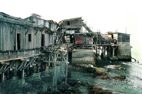 Photograph - Hovden Cannery Pump House, Cannery Row May 1980 by California Views Archives Mr Pat Hathaway Archives