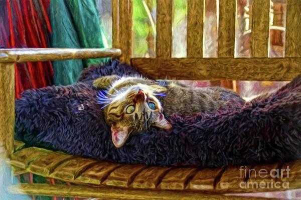 Photograph - How My Cat Looks When I Am On Acid by John Kolenberg