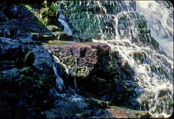 Kaaterskill Clove Photograph - How Temporal A Motif by Terrance DePietro