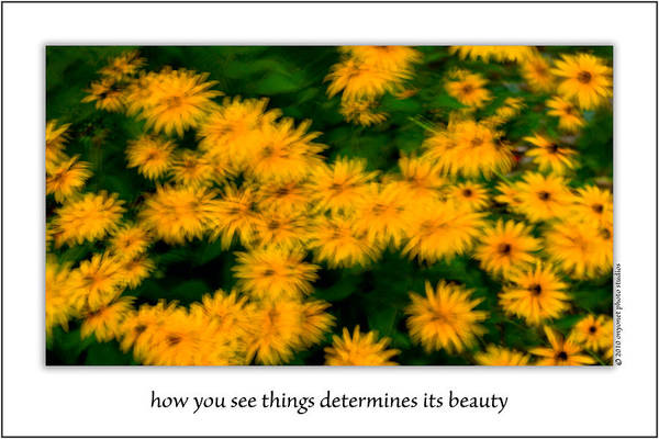 Photograph - How You See Things Determines Its Beauty by  Onyonet  Photo Studios