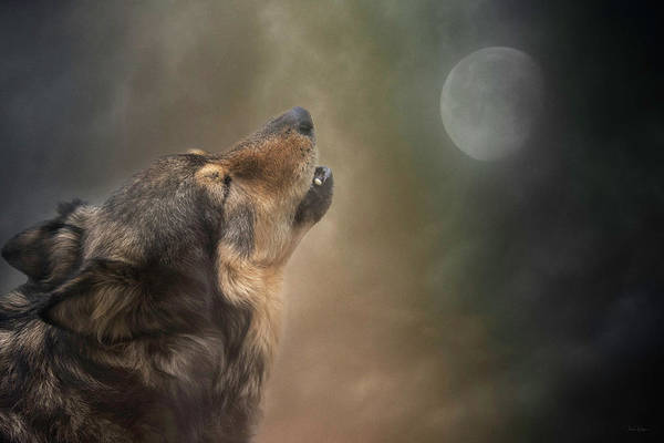 Digital Art - Howling At The Moon by Nicole Wilde