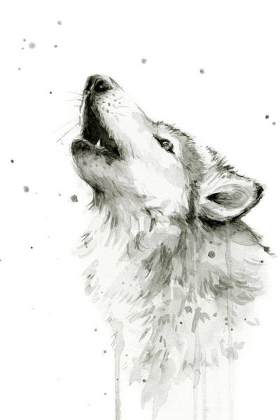 Drawing Painting - Howling Wolf Watercolor by Olga Shvartsur