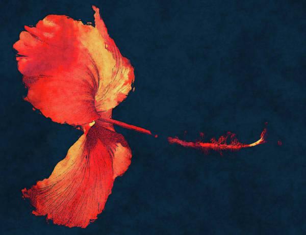 Digital Art - Huge Hibiscus Illustration by Isabella Howard