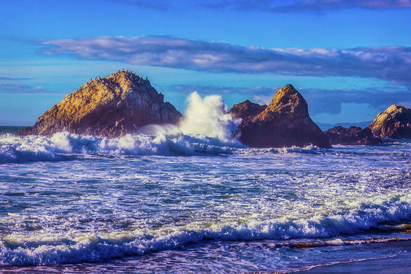 Wall Art - Photograph - Huge Wave Seal Rock by Garry Gay