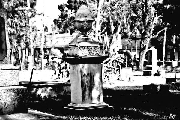 Photograph - Huguenot Cemetery St. Augustine 1 by Gina O'Brien