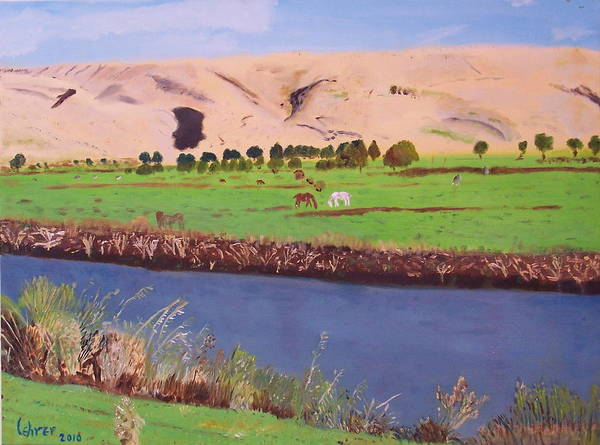 Avi Painting - Hula Galilee Israel by Avi Lehrer