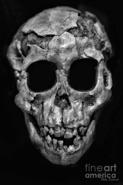 Photograph - Human Skull Black And White by Blake Richards
