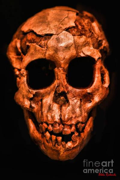 Photograph - Human Skull by Blake Richards