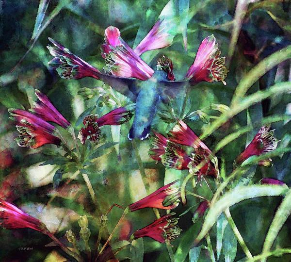 Photograph - Humming Bird Garden 3027 Idp_2 by Steven Ward
