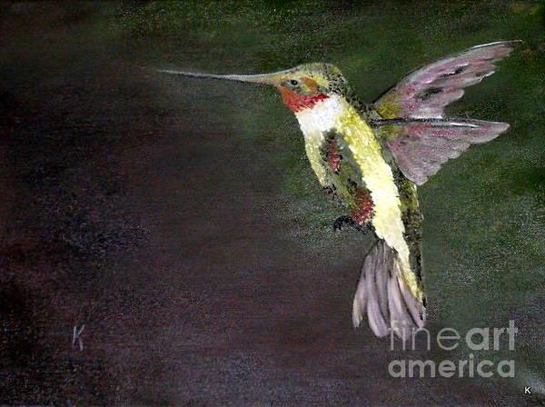 Anglin Wall Art - Painting - Humming Bird by Kalib Anglin