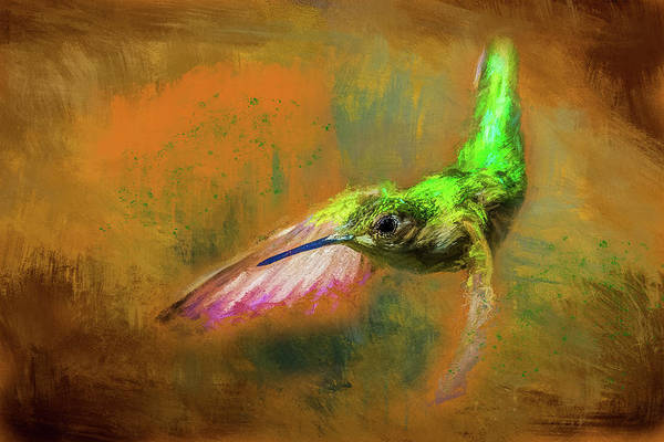 Wall Art - Digital Art - Humming Bird Painted by Paul Freidlund