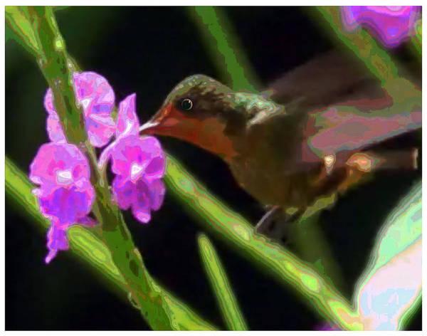 Nectar Mixed Media - Humming Bird Sucking On Pink Purple Flowers by Navin Joshi