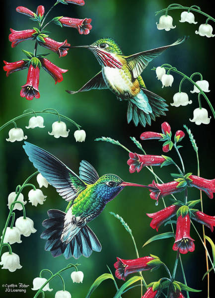 Humming Bird Wall Art - Painting - Humming Birds 2 by JQ Licensing