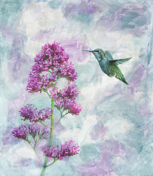 Wall Art - Photograph - Hummingbird 2 by Rebecca Cozart