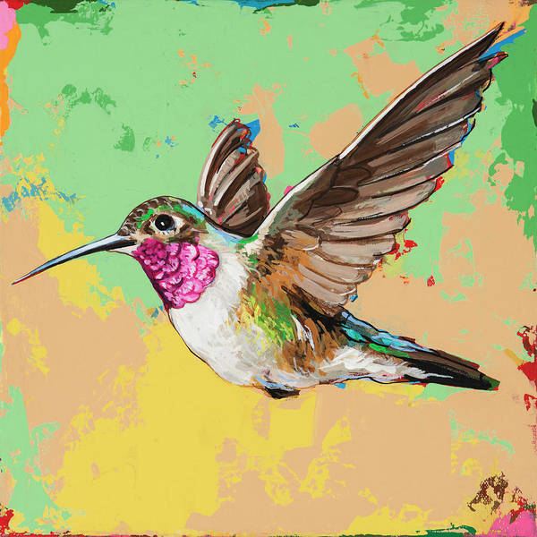 Small Birds Painting - Hummingbird #21 by David Palmer
