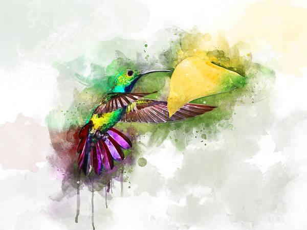 Wall Art - Digital Art - Hummingbird by Aged Pixel