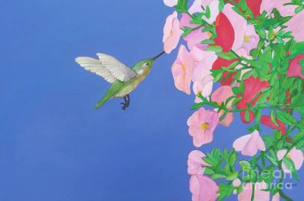 Hummingbird And Petunias Art Print