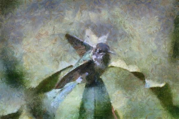 Nectar Mixed Media - Hummingbird At Sunrise Ready For Flight Pa by Thomas Woolworth