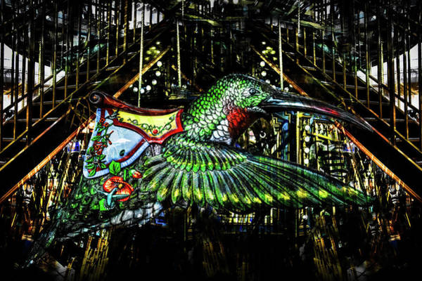 Photograph - Hummingbird Carousel 2 by Michael Arend