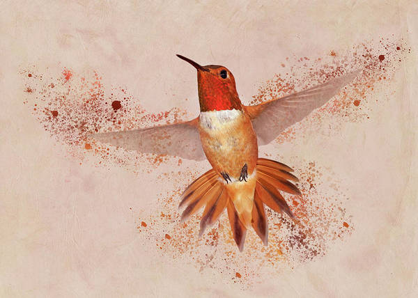 Photograph - Hummingbird Color Splash II by Leda Robertson