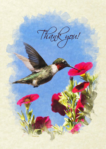 Photograph - Hummingbird Moment In Time Thank You Card by Christina Rollo