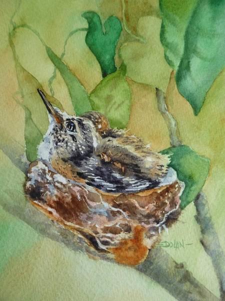Hummingbird Nestiing Art Print