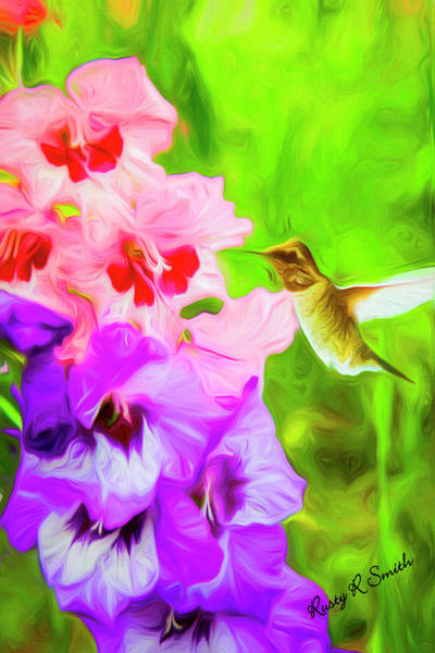 Digital Art - Hummingbird On Gladiolas. by Rusty R Smith