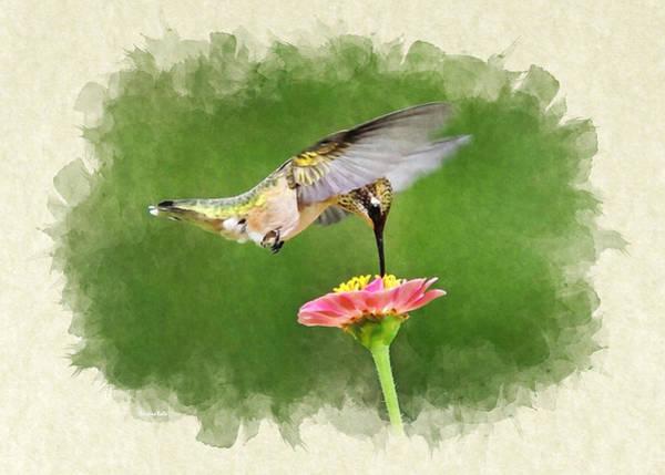 Mixed Media - Hummingbird Sun Sweet Blank Note Card by Christina Rollo
