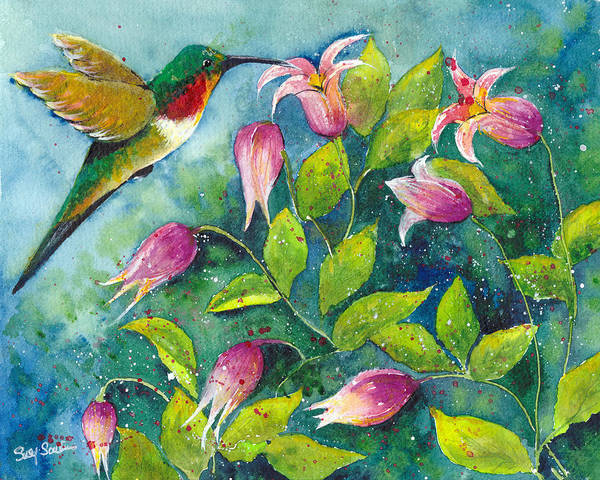 Wall Art - Painting - Hummingbird by Susy Soulies