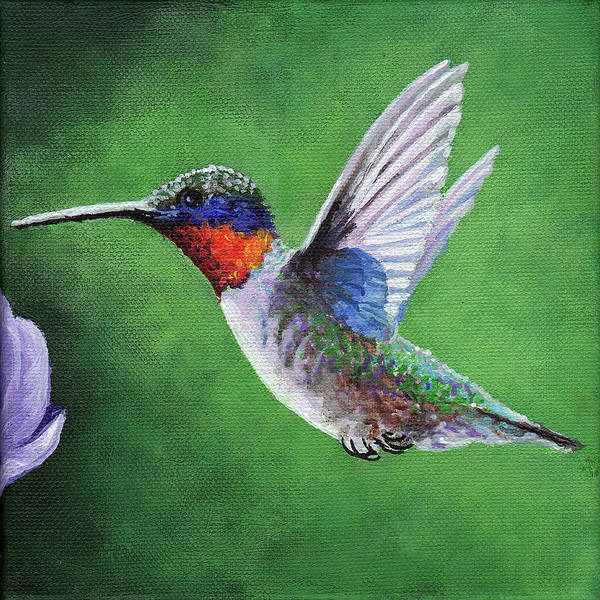 Wall Art - Painting - Hummingbird by Timithy L Gordon