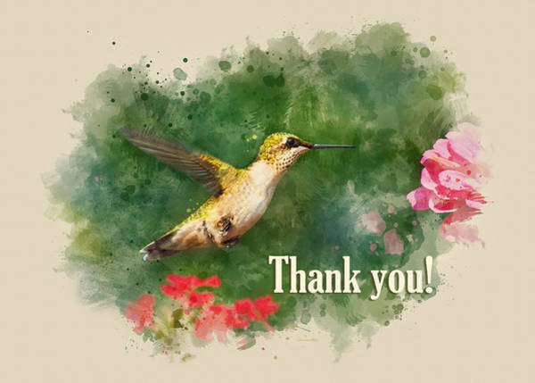 Mixed Media - Hummingbird Watercolor Thank You Card by Christina Rollo