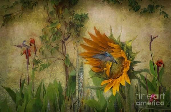 Hummingbirds In My Garden Art Print