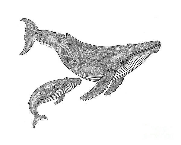Tropical Drawing - Humpback And Calf by Carol Lynne
