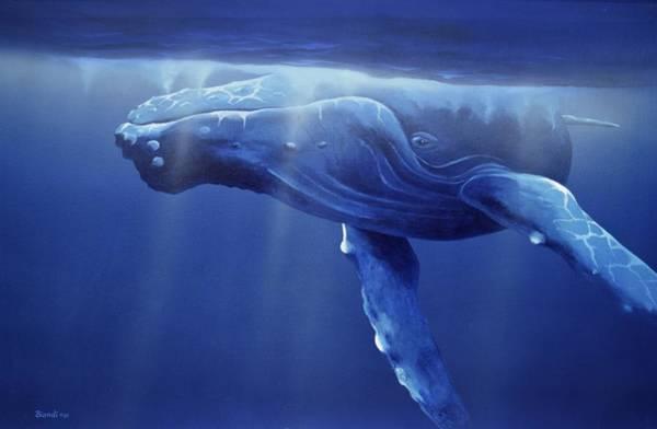 Painting - Humpback Portrait by Janet Biondi