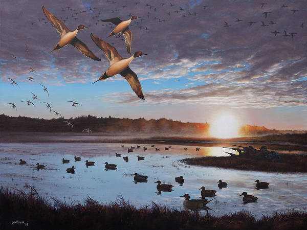 Painting - Humphrey Farm Pintails by Glenn Pollard