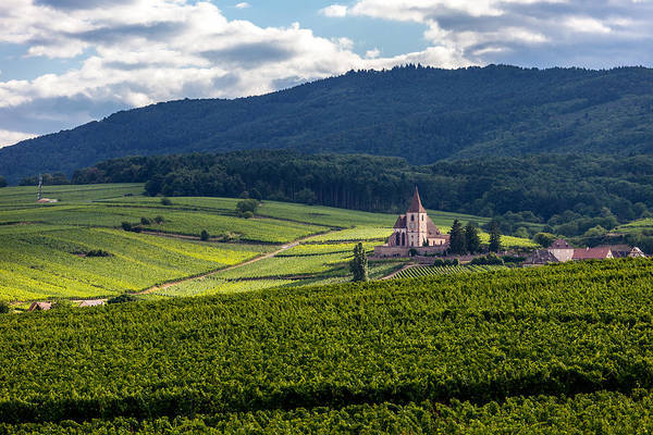 Alsace Wall Art - Photograph - Hunawihr In The Vineyards by W Chris Fooshee