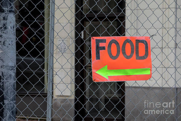 Photograph - Hungry? by Jim West