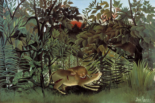 Painting - Hungry Lion by Henri Rousseau