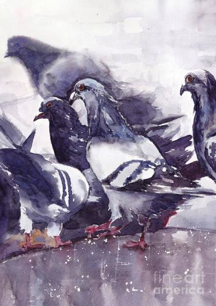 Dreamy Wall Art - Painting - Hungry Pigeons Watercolor by Suzann's Art