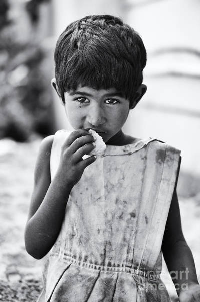 Hungry Photograph - Hungry by Tim Gainey