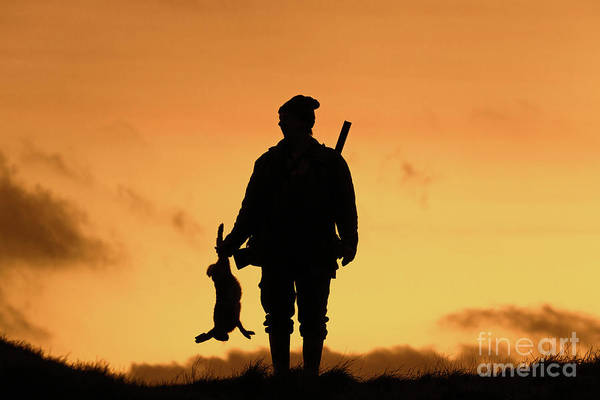 Photograph - Hunter At Sunset by Arterra Picture Library
