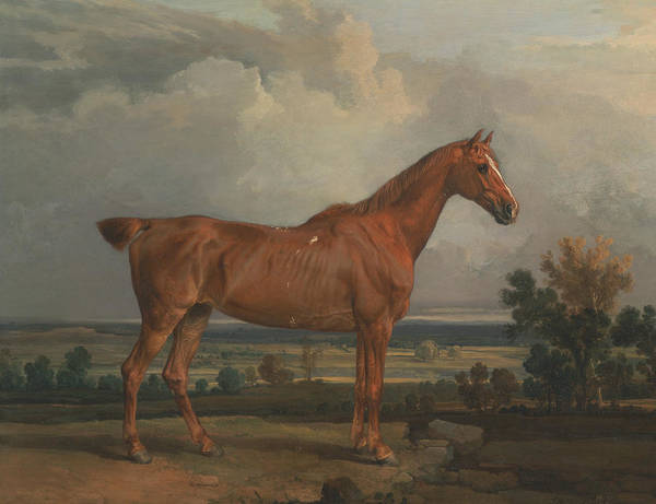Ward Painting - Hunter In A Landscape by James Ward