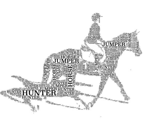 Photograph - Hunter Jumper by Alice Gipson