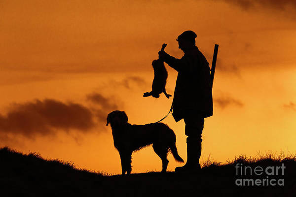 Photograph - Hunter With Hare by Arterra Picture Library