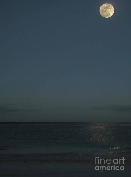 Photograph - Hunters Moon At Clearwater Beach by D Hackett