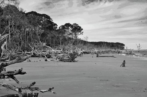 Photograph - Hunting Island  by Bill Hosford