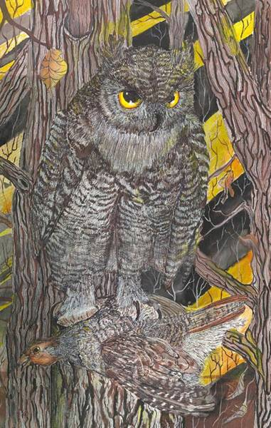 Painting - Hunting Owl by Darren Cannell