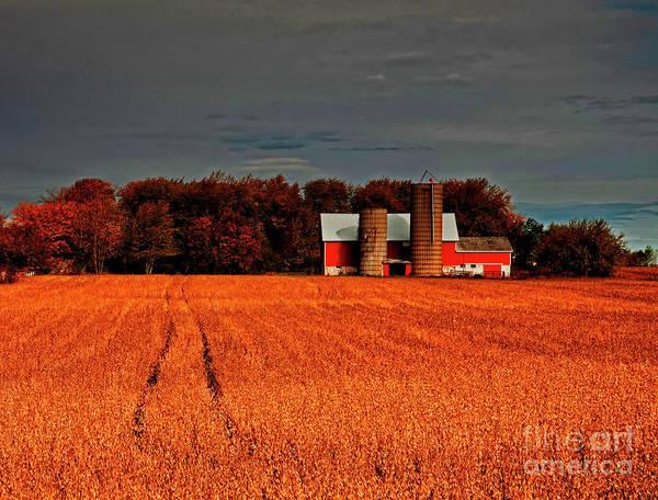 Photograph - Huntley,  Longmeadow,  Barn, Bean, Field, Fall by Tom Jelen