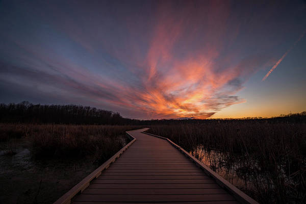 Huntley Meadows Sunset Art Print by Michael Donahue